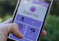 La app Planttes. / UAB